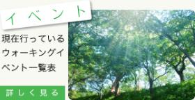 top_bn5